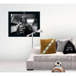 Accueil Star Wars - Coussin Chewbacca
